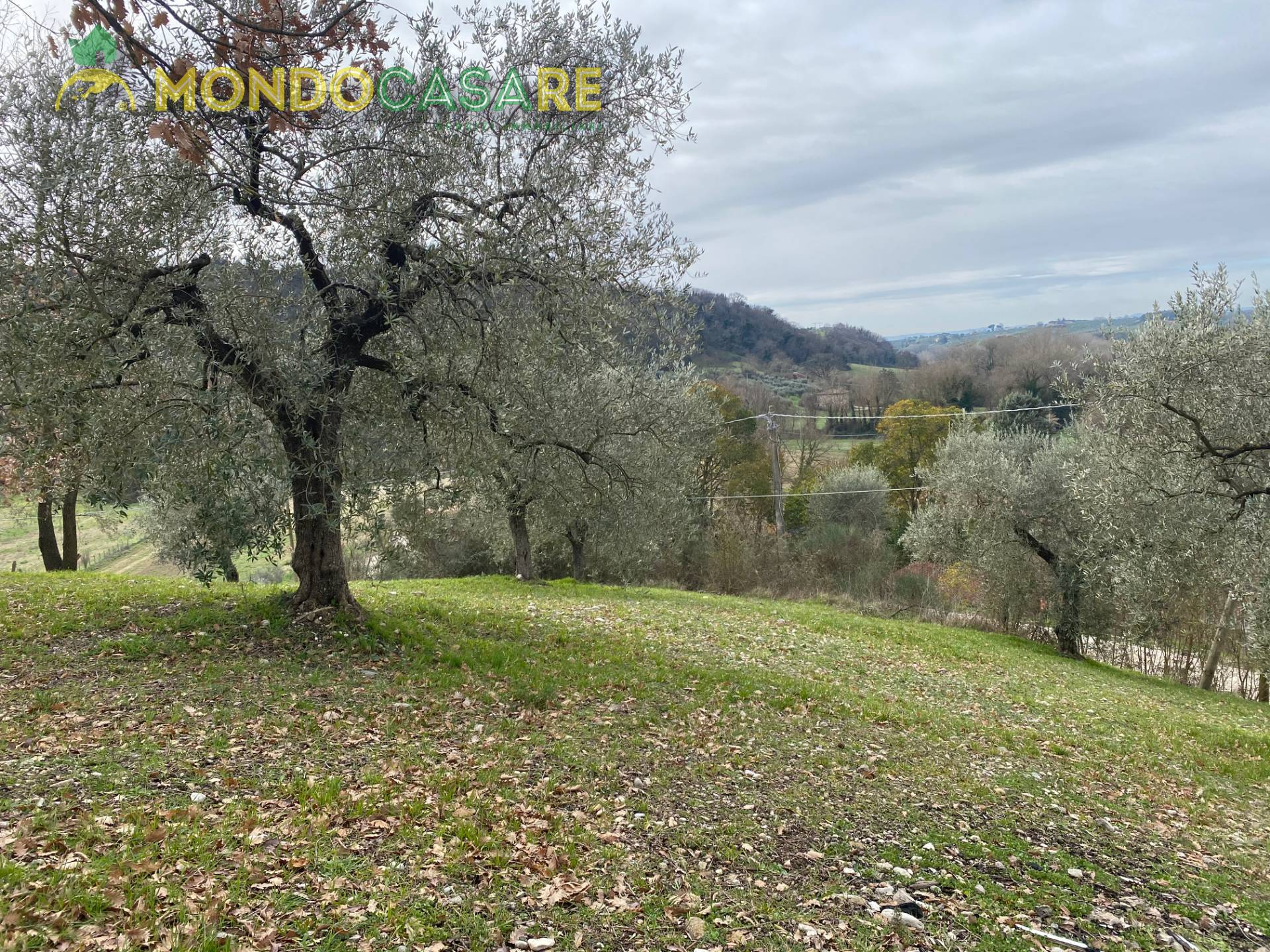 Terreno Agricolo in vendita a Fara in Sabina, 9999 locali, zona Zona: Talocci, prezzo € 10.000 | CambioCasa.it