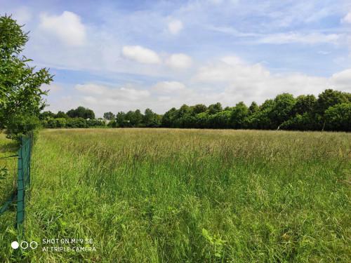 Terreno Agricolo in Vendita a Vaprio d'Adda