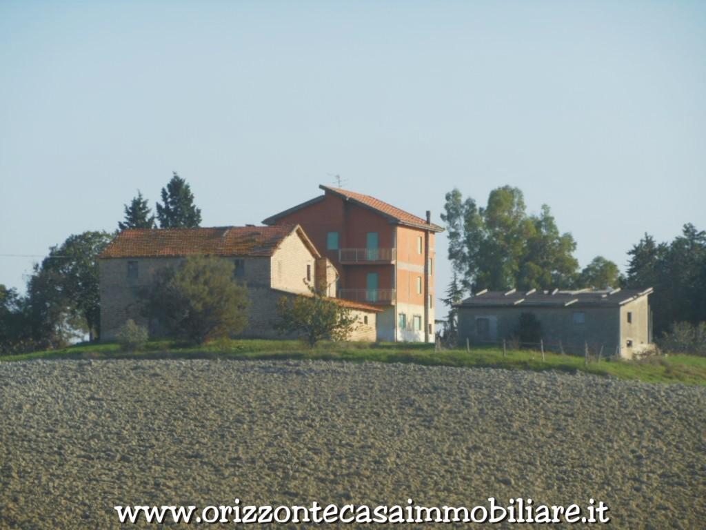 Azienda Agricola in vendita a Appignano del Tronto, 9999 locali, Trattative riservate | CambioCasa.it