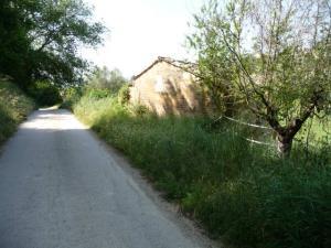 Rustico/Casale in Vendita a Monsampolo del Tronto