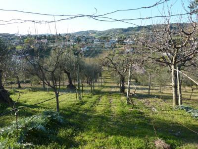 Rustico/Casale in Vendita a San Benedetto del Tronto