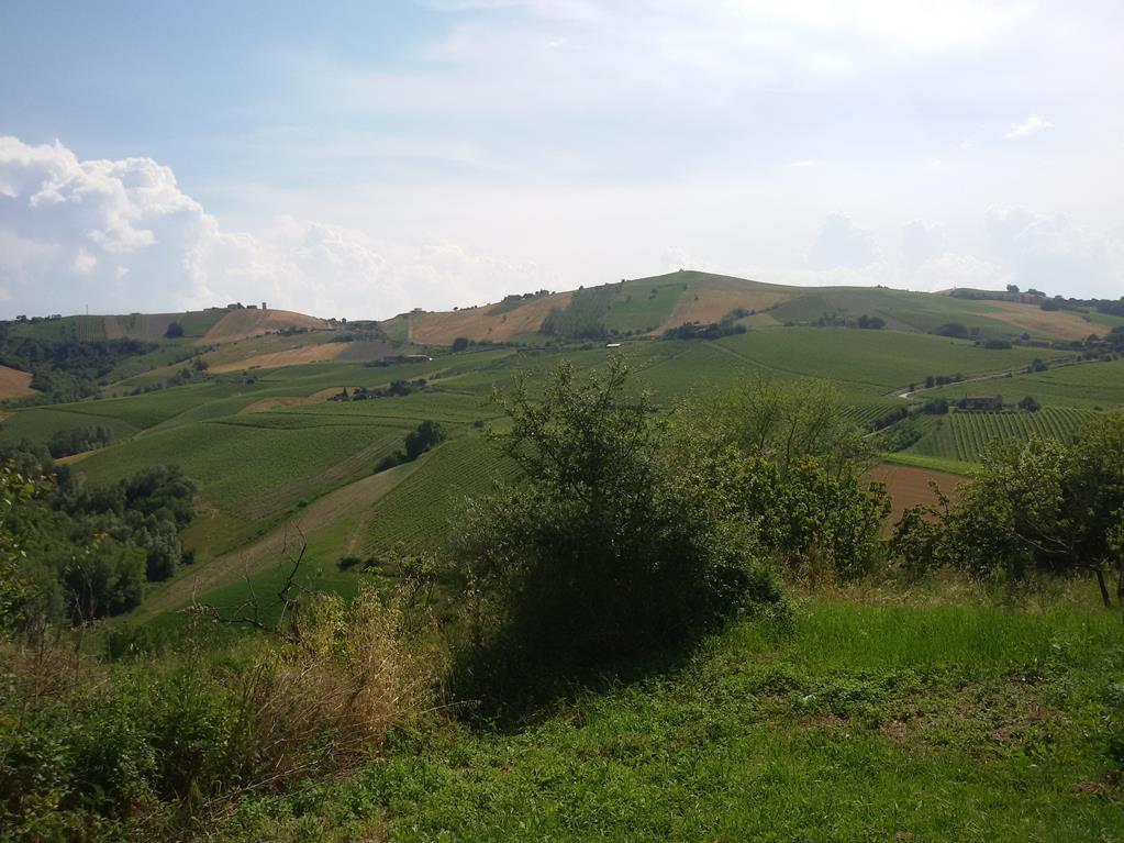 Casale a Ripatransone (Ascoli Piceno)