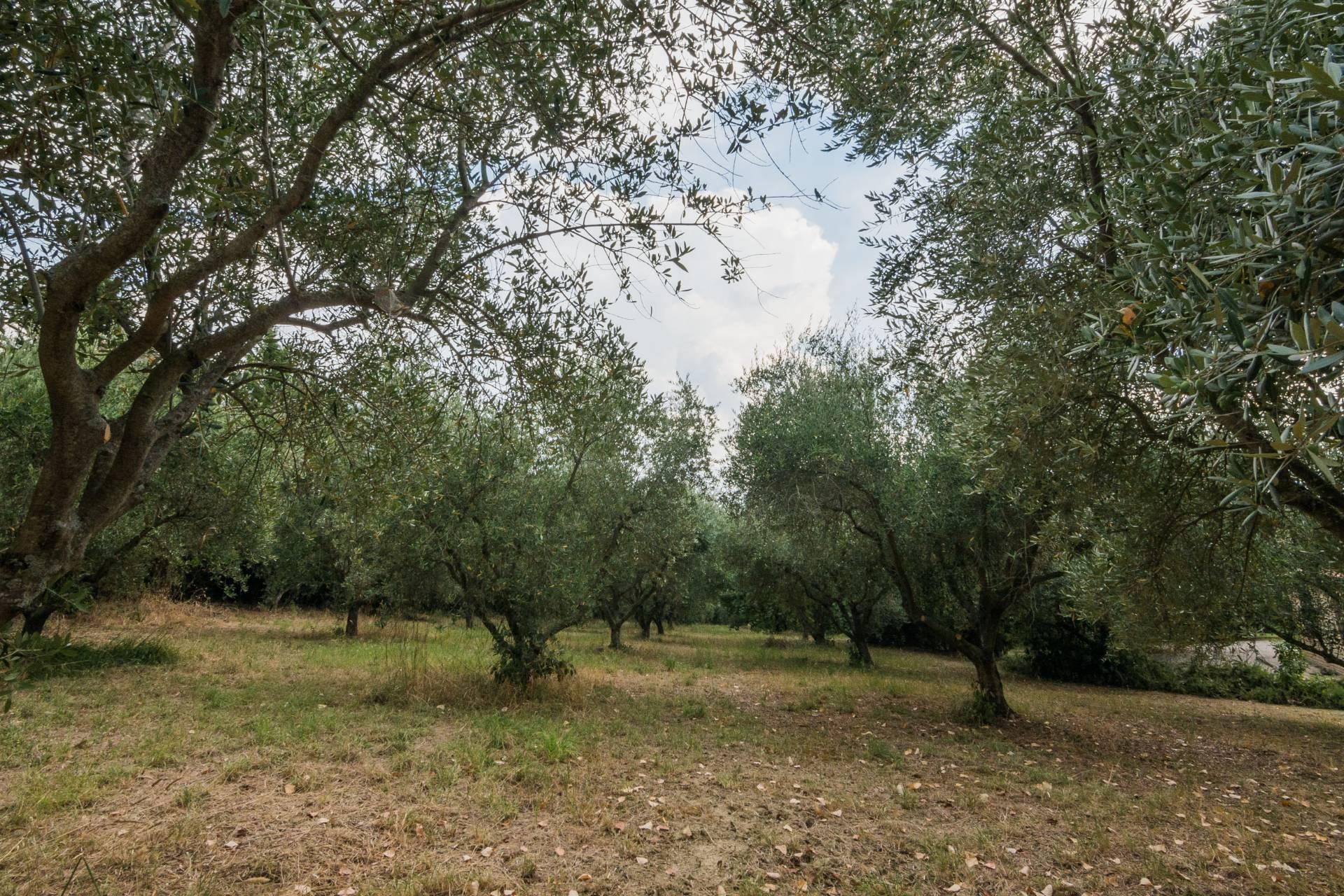 Casale a Jesi (Ancona)