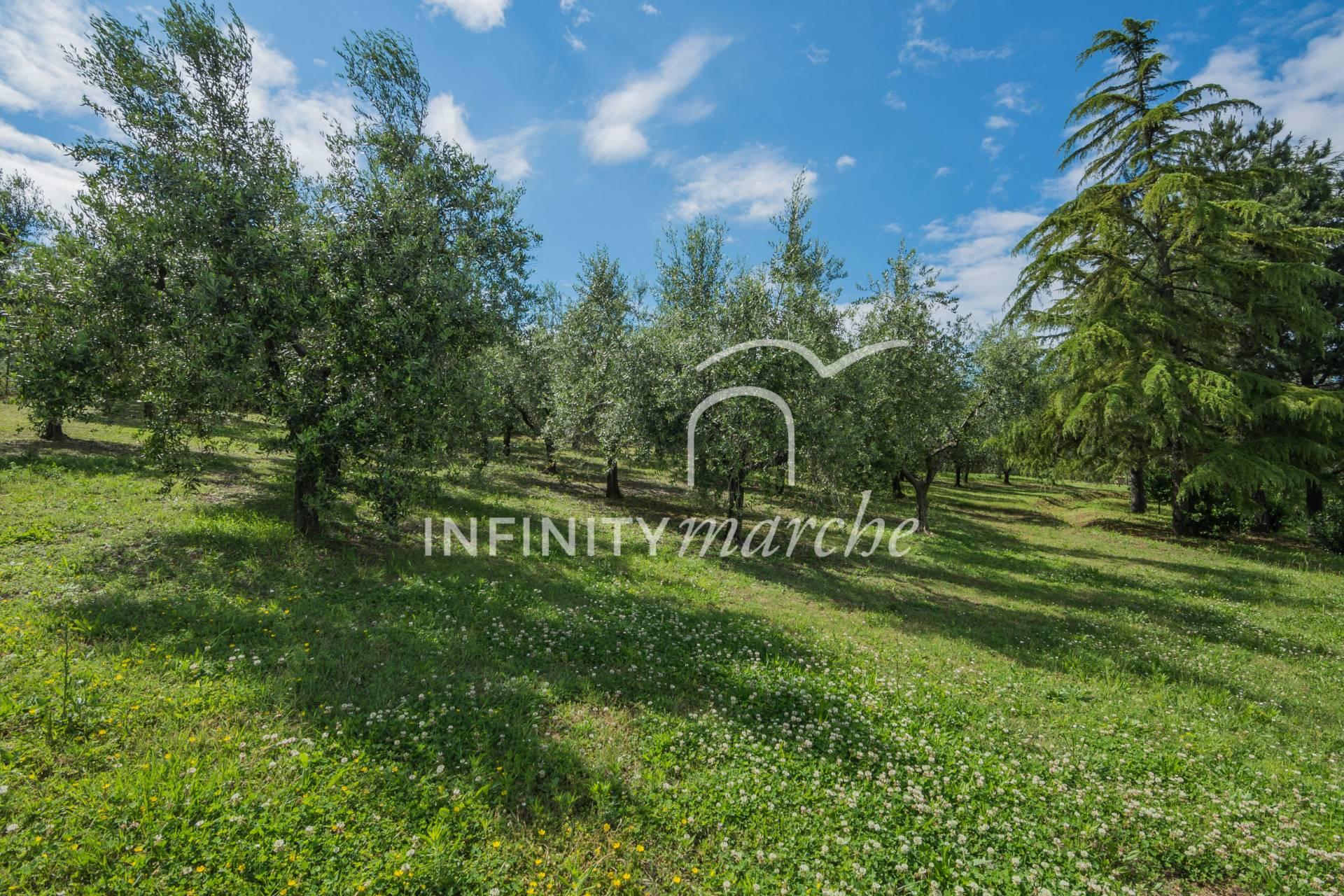 Villa a Osimo (Ancona)