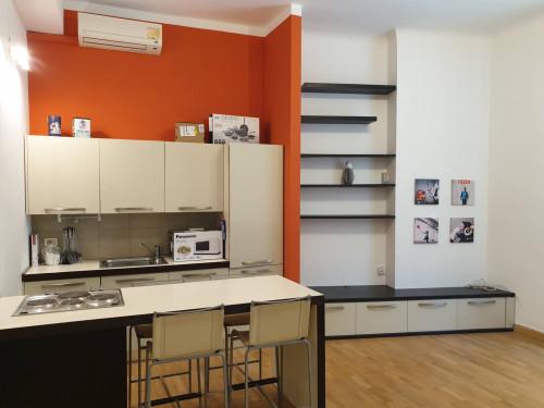 Monolocali in Affitto a Milano