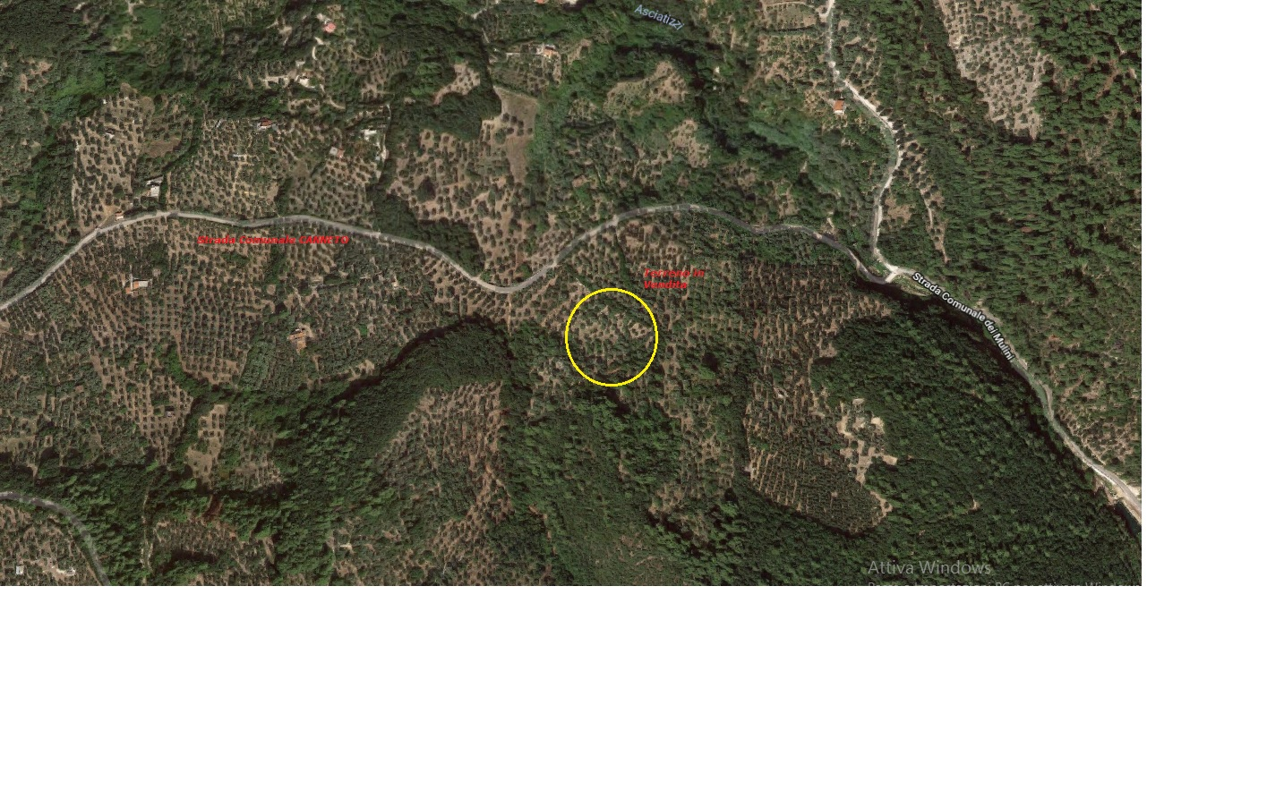 Terreno Agricolo in vendita a Vico del Gargano, 9999 locali, zona Località: Canneto, prezzo € 15.000 | PortaleAgenzieImmobiliari.it