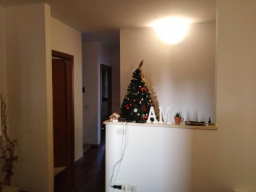 Appartamento duplex in Affitto a Fano