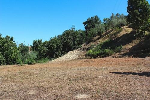 Terreno Agricolo in Vendita a Palombara Sabina