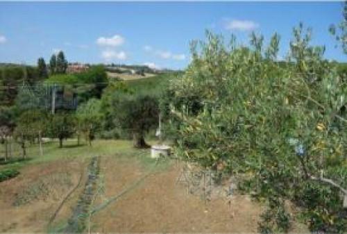 Terreno Agricolo a Santarcangelo di Romagna Via Cellette Martina