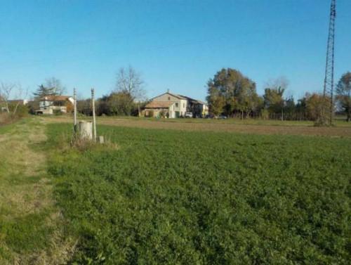 terreno agricolo con magazzino a Cesenatico Via San Pellegrino
