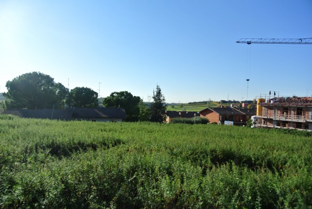 Terreno edificabile in Vendita a Sona