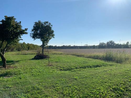 Terreno Agricolo in Vendita a Marcon