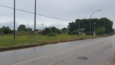 Terreno Agricolo incolto senza fabbricato in Vendita a Castelvetrano
