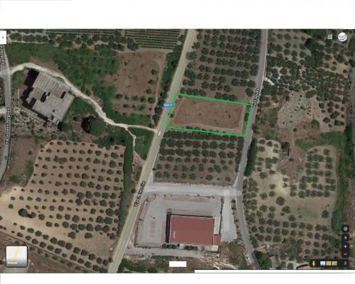 Terreno Agricolo coltivato con fabbricato in Vendita a Castelvetrano