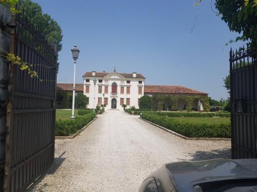 Villa in Affitto a Montegalda