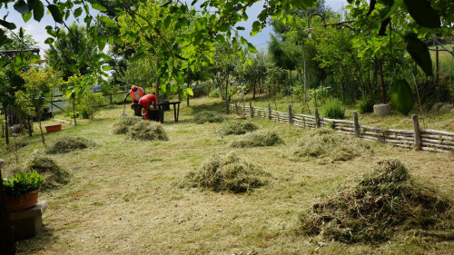 Terreno Agricolo in Vendita a Tolentino