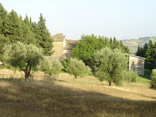 Terreno edificabile in Vendita a Tolentino