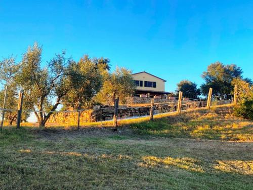 Villa in Vendita a Campagnatico