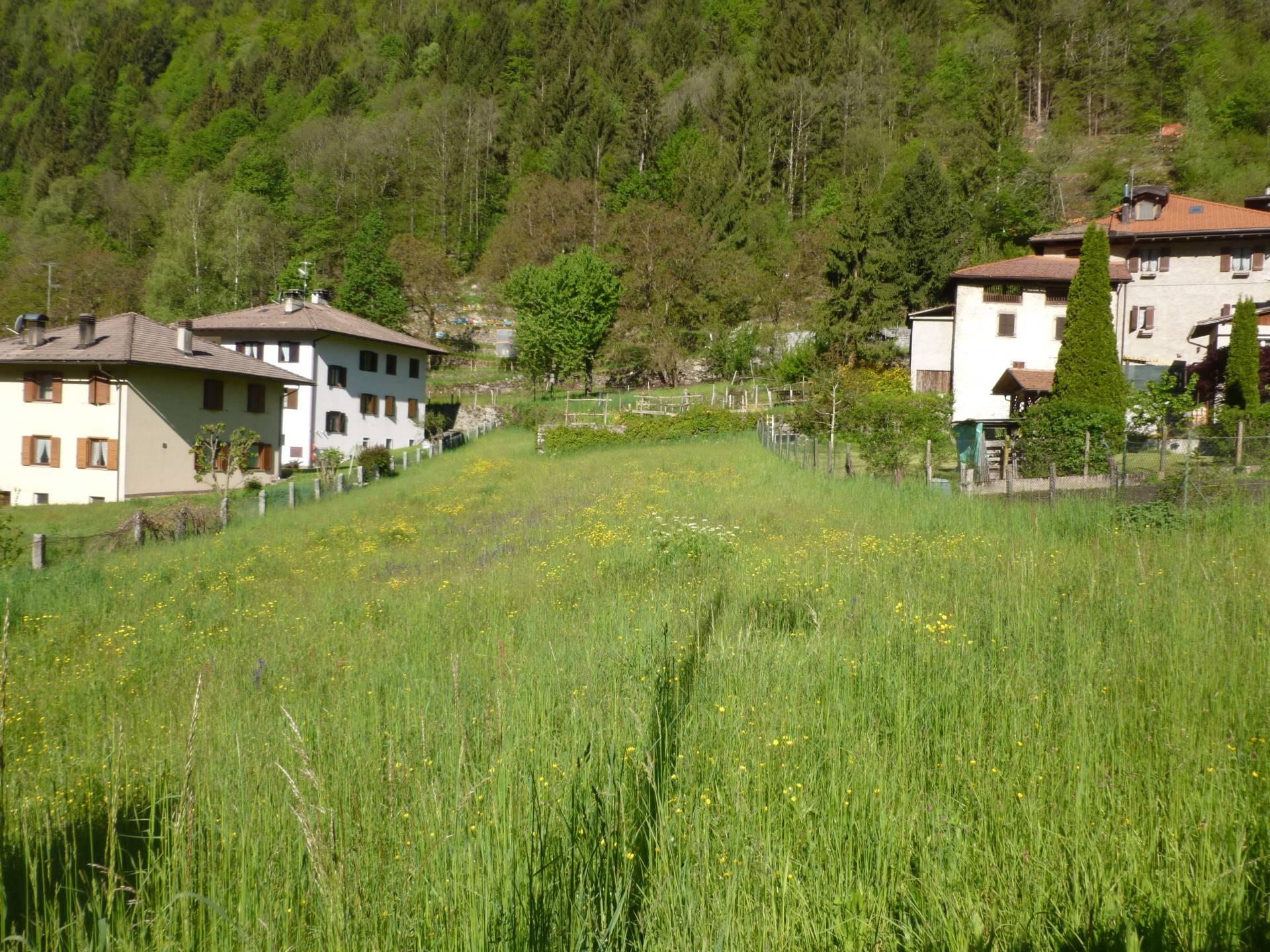 Terreno Edificabile Residenziale in vendita a Pelugo, 9999 locali, prezzo € 160.000 | CambioCasa.it