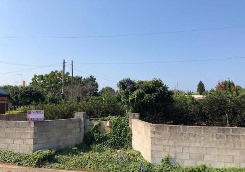 Terreno Agricolo in Vendita a Gallipoli