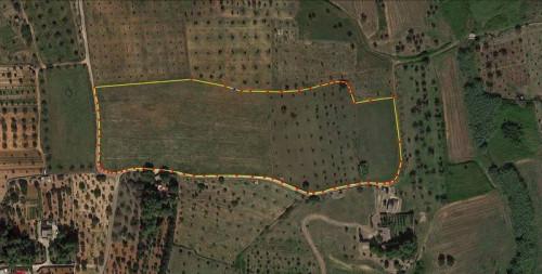 Terreno Agricolo in Vendita a Sannicola