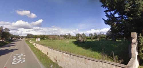 Terreno Agricolo in Vendita a Alezio