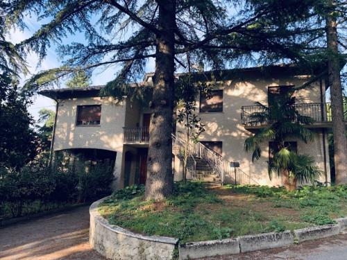 Casa singola in Affitto a Montecarotto