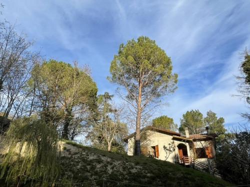 Villa in Vendita a Serra San Quirico