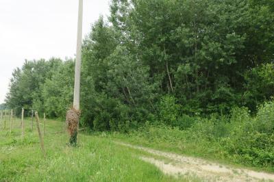 Terreno agricolo in Vendita a Staranzano
