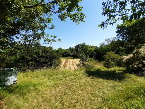 Terreno agricolo in Vendita a Doberdò del Lago