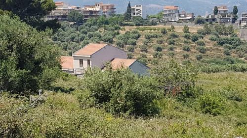 Vai alla scheda: Terreno Agricolo Vendita Furnari