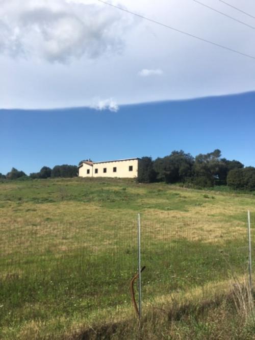 Terreno Agricolo in Vendita a Decimomannu