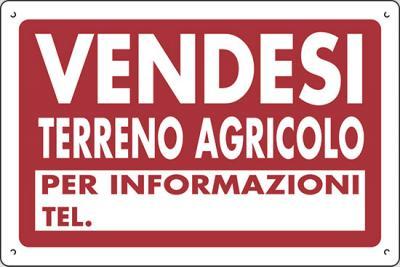 Terreno Agricolo in Vendita a Montignoso